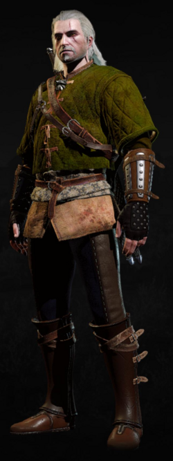 Tw3 armor skellige gambeson.png