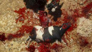 Tw3 contract bovine blues.jpg