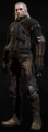 Tw3 armor temerian gear.png