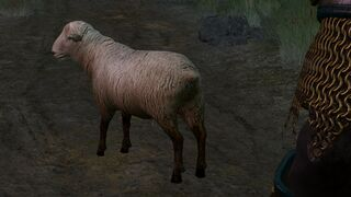 Tw3 mia the sheep.jpg