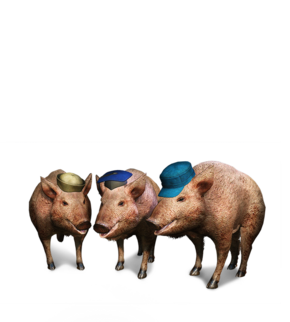 Tw3 journal three little pigs.png