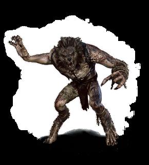 Tw3 journal werewolf.png