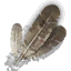 Tw3 harpy feathers.png