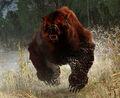 Tw3 bear.jpg