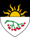 speculative coat of arms for Rowan