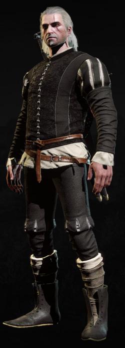 Tw3 armor elegant courtiers doublet 2.png