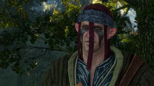 Tw3 scoiatael merchant gwent player.jpg