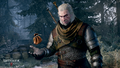 The-witcher-3-wild-hunt-getting-paid-best-part-of-the-job.png