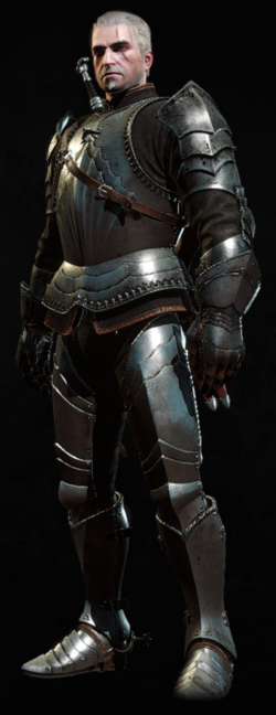 Tw3 armor Toussaint knight gear.png