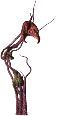 Bestiary Archespore full.png