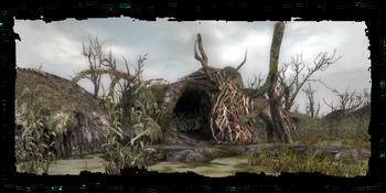 the druids' cave