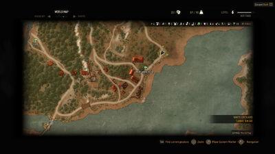 Witcher 3 Ransacked village.jpg