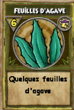 Feuille d'agave.png