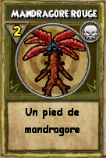 Mandragore rouge.png