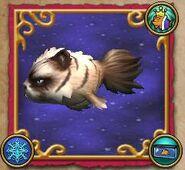 Pesce gatto irascibile