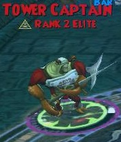 Tower Captain