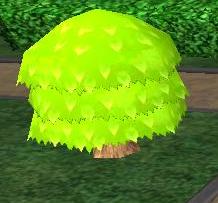 Domed Tree