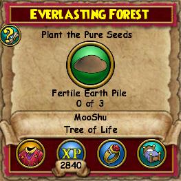 Everlasting Forest