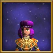 Sturdy Purple Hood