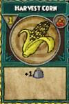 Harvest Corn.jpg