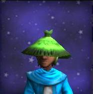 Hat of the Nimble