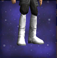 Exacting Boots