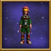 Cardinal's Uniform