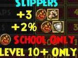 Fireguard Slippers