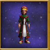 Robe Rogue's Coat Male.png