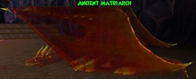 Ancient Matriarch.jpg