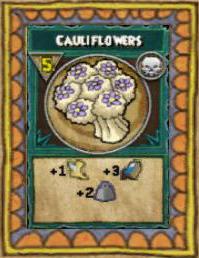 Snack Cauliflowers.png