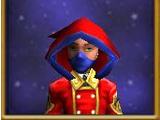 Spellbinder's Hood