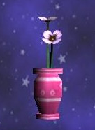 Potted Purple Pansy