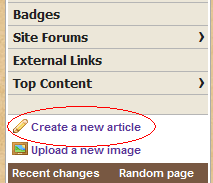 Create a New Article.png