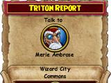 Triton Report
