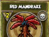 Red Mandrake