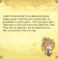 Hisoka journal 4