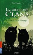 Francuski ebook uwd