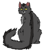 Graystripe Loner