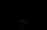 Wolfenstein Censored Parteiadler