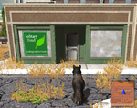 SolitaryHowl store