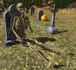 2.7.3 holiday lr skeleton