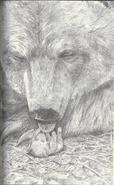 Lonewolfjpnart2