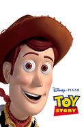 Toystory 2015