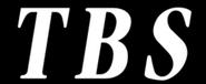 TBS 1991