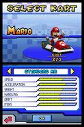 Mariokartds 41