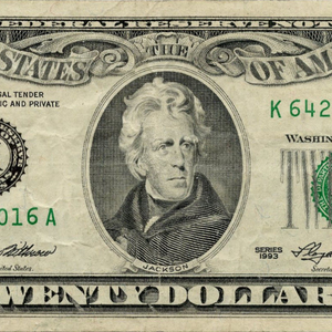 $20-K (1994).png