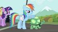 Rainbow Dash with Tank S2E07