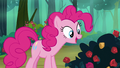 Pinkie Pie stops to smell the roses S8E13