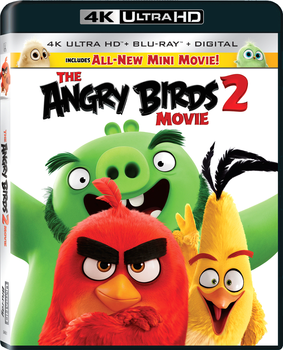 The Angry Birds Movie 2 (Blu-ray/DVD)